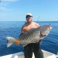 grouper.davids